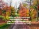 Fall photo of gratitude
